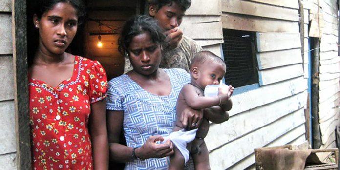 Child Prostitution In Sri Lanka   Pulse